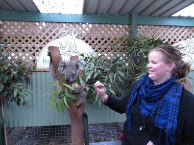 En de koala eten geven!! :)