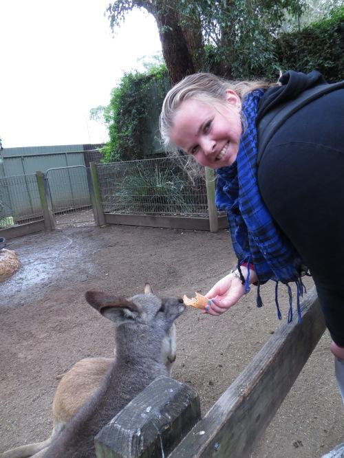 Iemand zei: 'Ik maak wel een foto als je de kangoeroe voert! Even hierheen kijken!' Vond t maar creapy straks knauwt hij in je vinger ;)